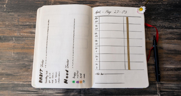 Bullet journal open on wooden table showing calendar and habit tracker