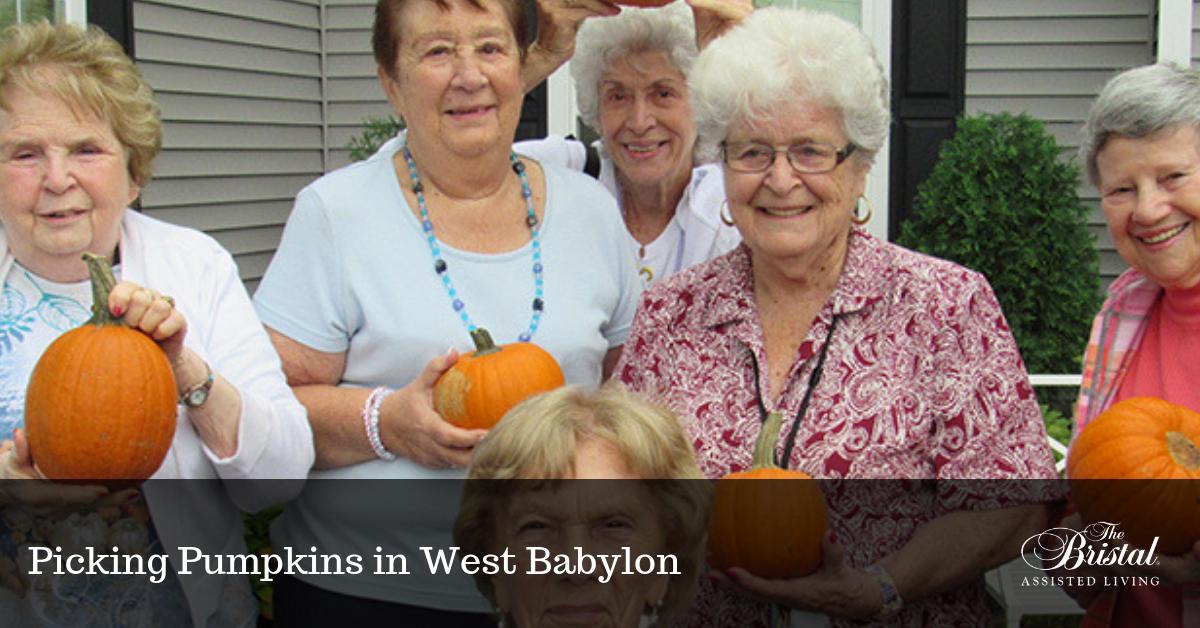 Picking Pumpkins in West Babylon