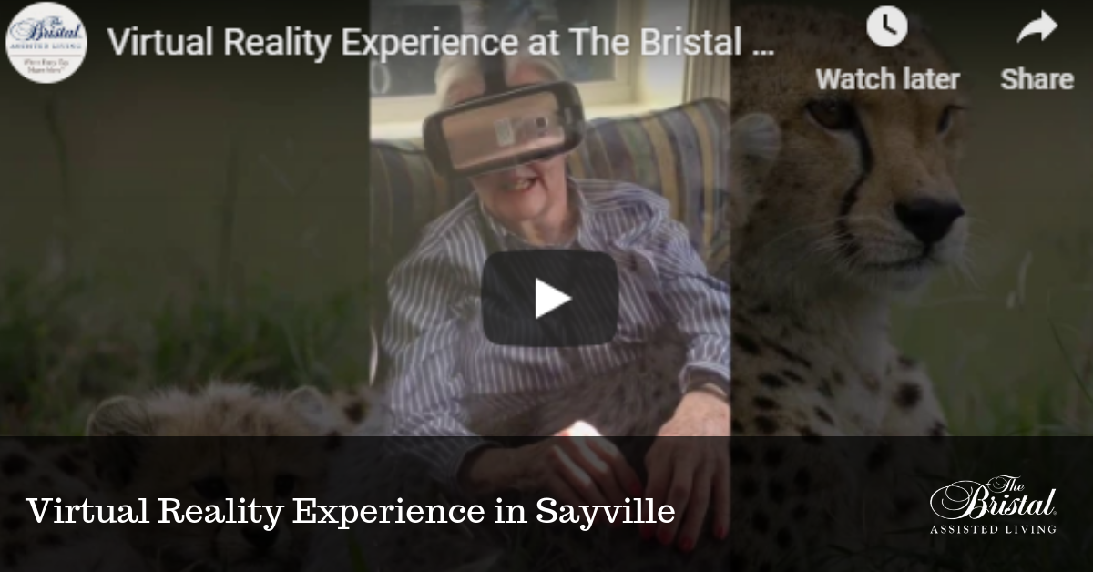 Virtual Reality Experience in Sayville